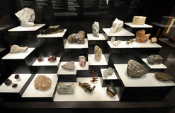 Rock and stones. Exhibition of specimens of rare stones and rocks, which have been found in the province of Manitoba, Canada. The exhibition takes place in the Stock Image