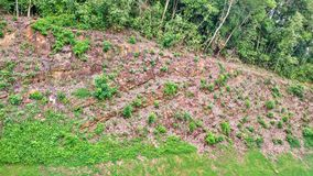 Rock strata - Singapore. Tilted or slanted layers of rock strata at a Bukit Batok forested hill in Singapore Stock Photo