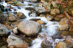 Rock Stream Stock Photography