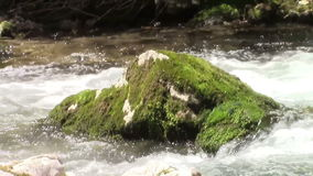 Rock on a stream stock video footage