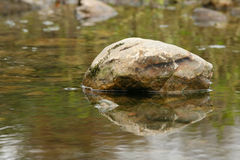 Rock in a stream of water Royalty Free Stock Image
