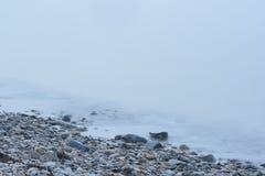 Rock Strewn Coastal Maine Beach In Heavy Fog Stock Photo