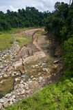 A rock strewn river with trees/jungles on both sid Royalty Free Stock Image