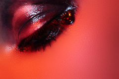 Rock style. Macro fashion dark gloss eye make-up Royalty Free Stock Photo