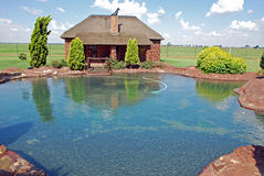 Rock Style Swimming Pool Royalty Free Stock Photos