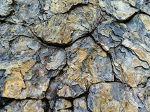 Rock surface texture Royalty Free Stock Photo