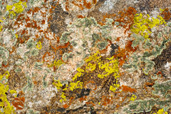 Free Rock Surface With Lichen And Moss Stock Images - 32267954