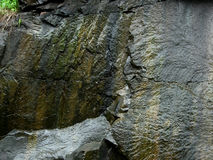 Rock texture. Details of the texture of a large, wet, black rock Royalty Free Stock Image