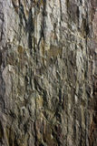 Rock Texture  Background Stock Photography
