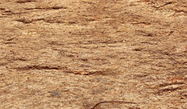 Rock texture background. Rock at the Hill texture background Stock Photography