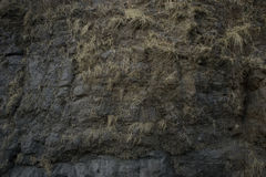 Rock texture background. Stone background Royalty Free Stock Photos