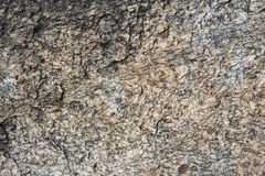 Rock texture background. Rock surface texture and background Stock Image