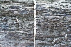 Rock texture. Stock Photos