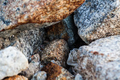 Rock texture in close up Stock Image