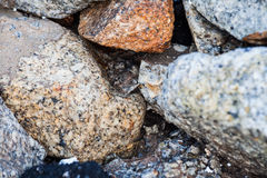 Rock texture in close up Royalty Free Stock Photos