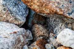 Rock texture in close up Royalty Free Stock Images