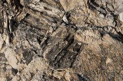 rock texture closeup Stock Photography