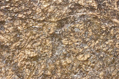 Rock texture. Rugged rock texture for background Royalty Free Stock Photo