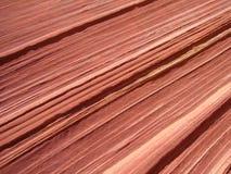 Rock texture in Utah Royalty Free Stock Photo
