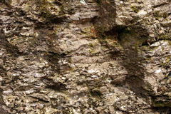 Rock textured stone. With lichen or moss on it outdoor shot Royalty Free Stock Image