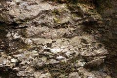 Rock texturerade stenen Royaltyfria Foton