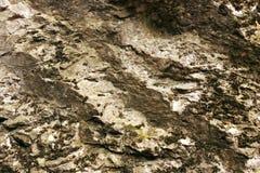 Rock texturerade stenen Royaltyfri Fotografi