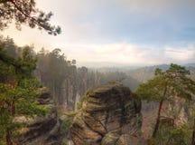 Rock Town in Bohemian Paradise Royalty Free Stock Image