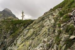 Rock trail on Polsky Hreben. High Tatras. Slovakia. Rock trail on Polsky Hreben. High Tatras. Slovakia stock images