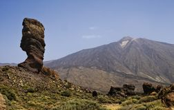 Rock tree and view on Teide, Tenerife, Spain. Stock Image