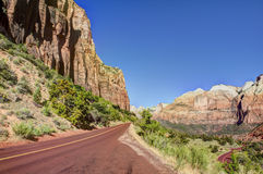 Rock, Trees, Roadway Zion National Park Royalty Free Stock Image