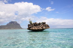 Rock in tropical setting Stock Image