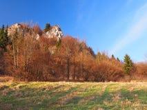 Rock at Tupa Skala, Vysnokubinske Skalky. Late autumn view of Tupa Skala, natural rocky monument. This locality is part of Vysnokubinske Skalky massive rocky royalty free stock photo