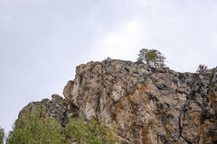 Rock with two pine trees against the sky Royalty Free Stock Image