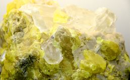 Rock with valuable yellow mineral just found by geologist Stock Photography