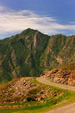 Rock with vegetation Stock Image