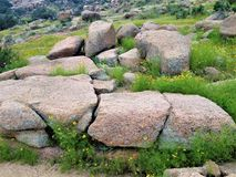 Rock, Vegetation, Boulder, Bedrock stock image