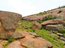 Rock, Vegetation, Nature Reserve, Bedrock stock images