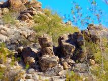 Rock, Vegetation, Nature Reserve, Plant stock photo