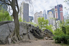 Rock View Central Park Royalty Free Stock Photo