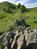 Rock wall. A rock wall created by the uplifting and weathering of a sedimentary layer of stone on Mt. Diablo California Stock Photo