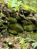 Rock Wall Stock Image