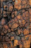 Rock wall texture, natural Royalty Free Stock Photos