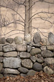 Rock Wall with Trees in Autumn Royalty Free Stock Images