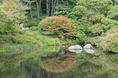 Rock in a water pond, open concept. A gray rock in a still water pond or edge of lake with reflections of green trees and other foliage such as bushes and leaves royalty free stock photography