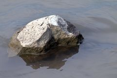 Rock in water shallow, Big stone in the drought, Stone over Surface water Global warming concept royalty free stock photos