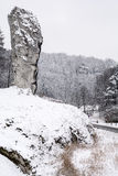"""Hercules Mace"" in winter. Rock ""Hercules Mace"" in the winter time in Ojcowski National Park (Poland&#x29 Stock Photos"