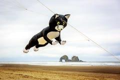 Rockaway Beach Kite Festival Royalty Free Stock Images
