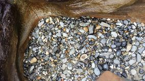 Rockbed di marea Immagini Stock Libere da Diritti
