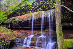 Rockbridge State Nature Preserve. In Spring Royalty Free Stock Image