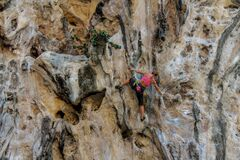 Rockclimber girl on the vertical wall climbing alone with a rope